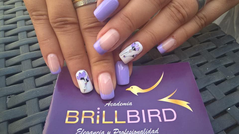 Academia-Brillbird-Canarias-2